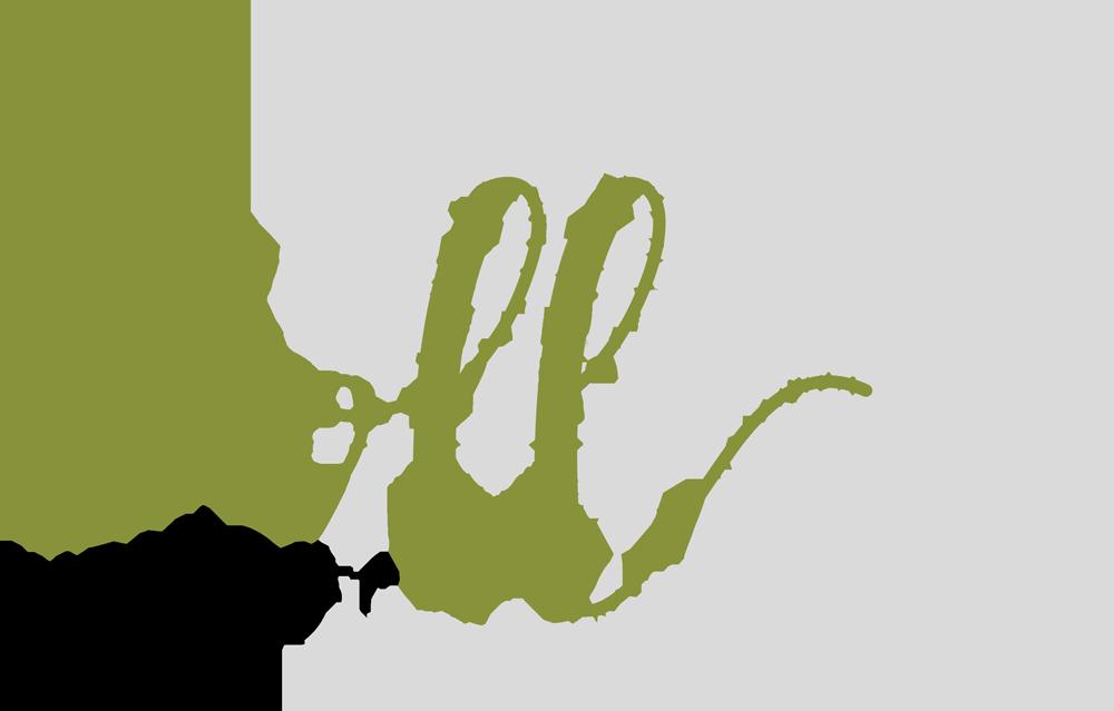 Weingut Doll Logo